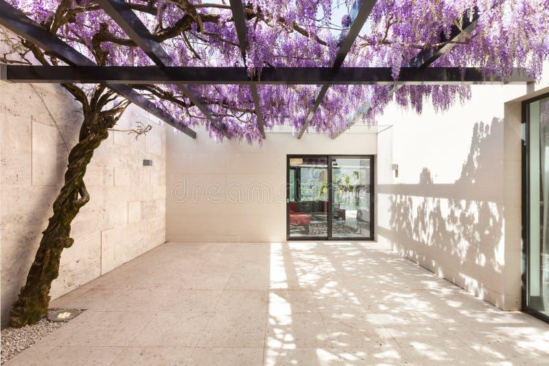 Härlig veranda med wisteria arkivfoto
