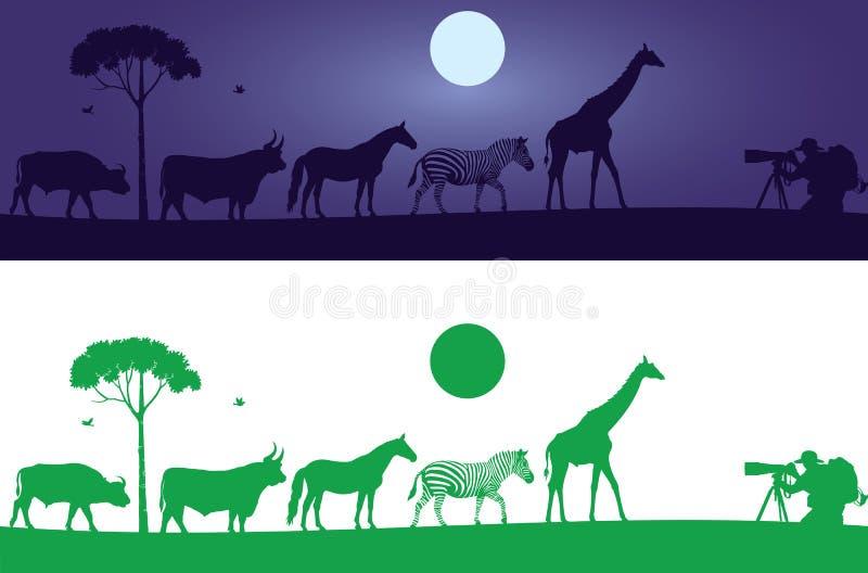 Härlig vilda djurväggdekal vektor illustrationer
