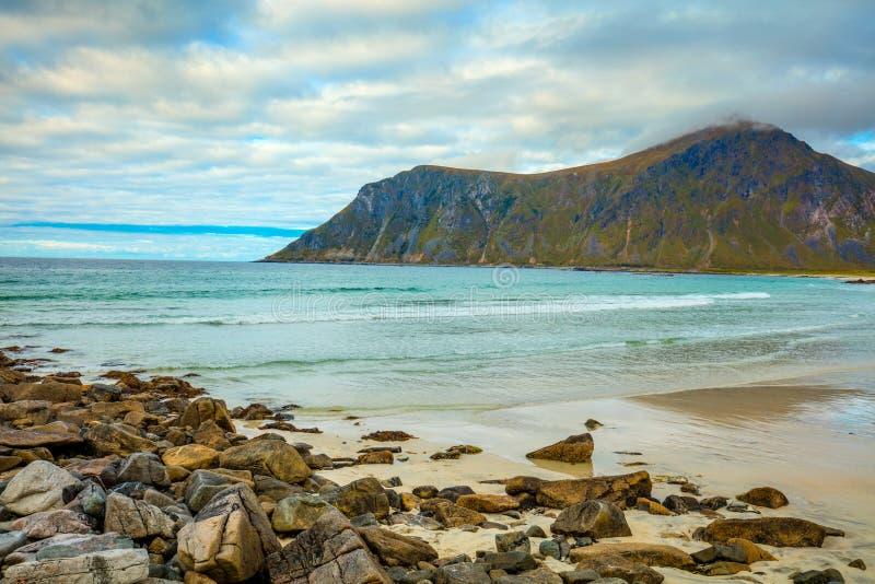 Härlig vildmark, stenig strand Lofoten öar, Norge arkivfoton