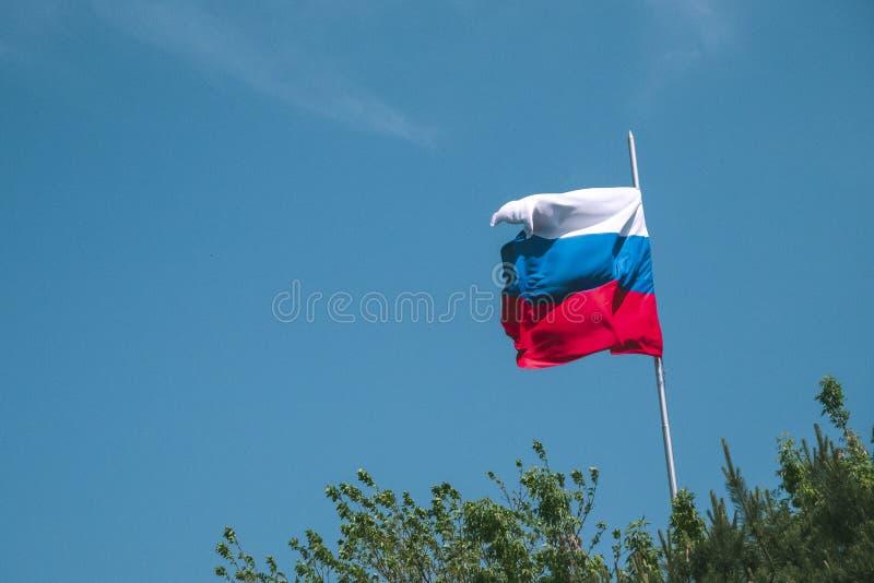 Härlig vinkande rysk flagga på en bakgrund av blå himmel och gröna träd fotografering för bildbyråer