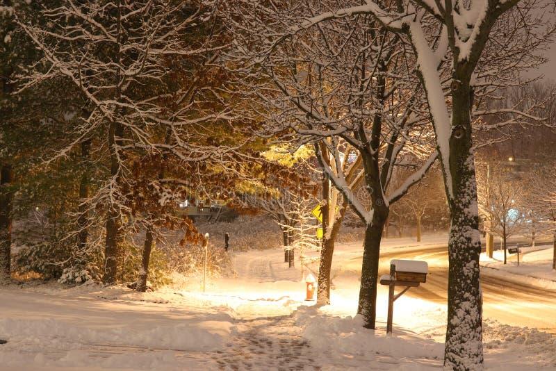 Härlig vinternattbakgrund arkivbild