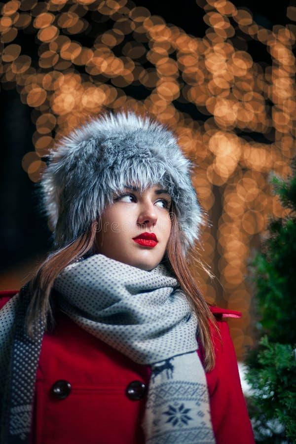 Härlig vinterstående arkivfoto