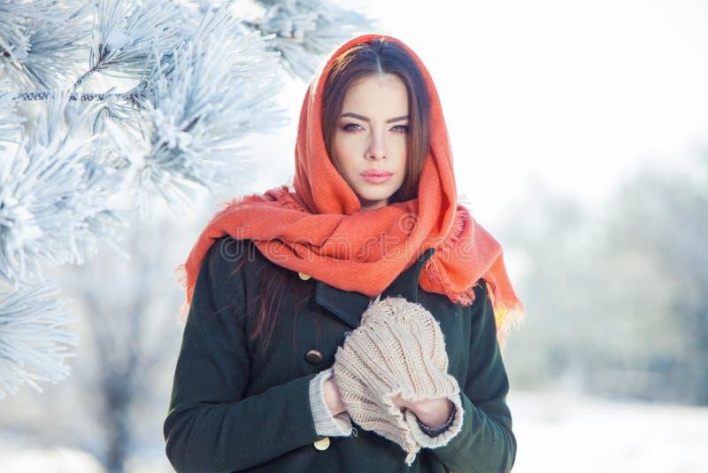 Härlig vinterstående av den unga kvinnan i det snöig landskapet royaltyfria foton