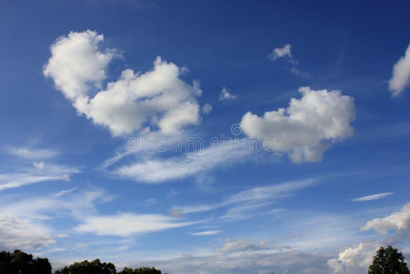 Härlig vit fördunklar mot blå himmel arkivfoto