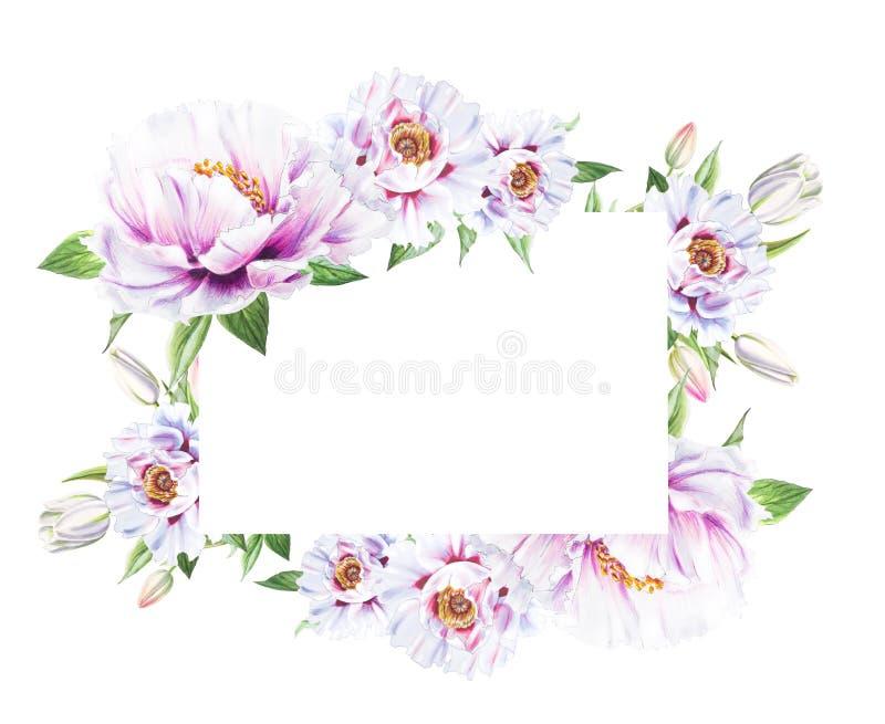 Härlig vit pion- och tulpanram Bukett av blommor Blom- tryck Mark?rteckning vektor illustrationer