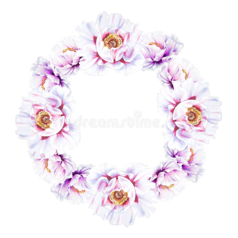 Härlig vit pionkrans Bukett av blommor Blom- tryck Mark?rteckning vektor illustrationer