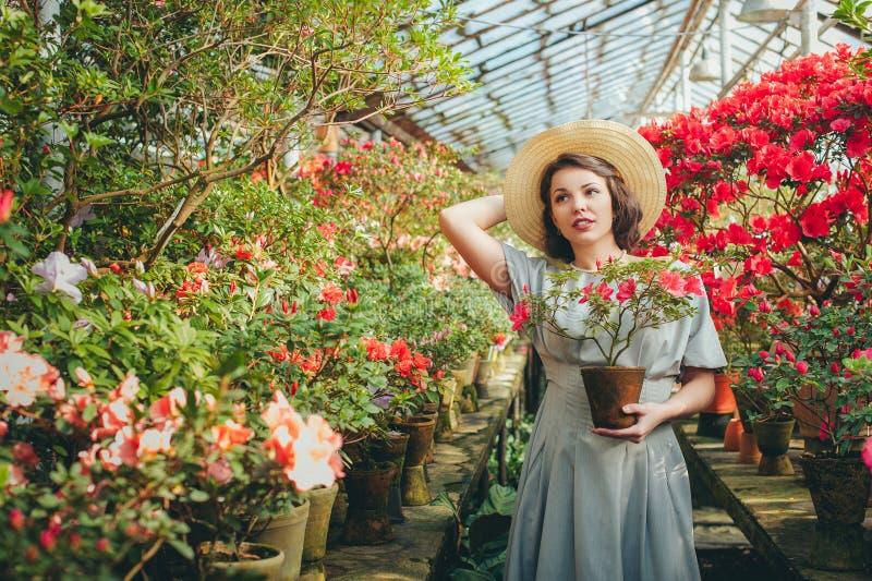 Härlig vuxen flicka i ett azaleaväxthus i en hatt som drömmer i en härlig retro klänning arkivfoto