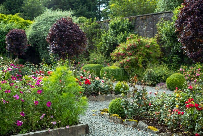 Härlig walled trädgård, UK royaltyfri foto