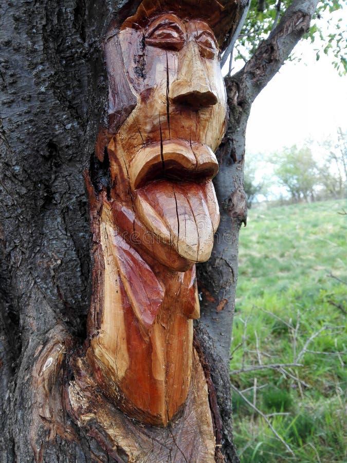 Härlig wood- konst arkivbild