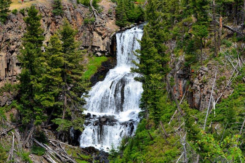 Härlig Yellowstone vattenfall royaltyfri bild