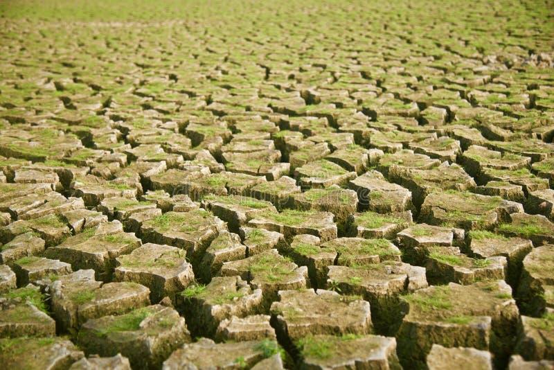 Härlig yttersida för torkad jord med sprickafotoet royaltyfri foto