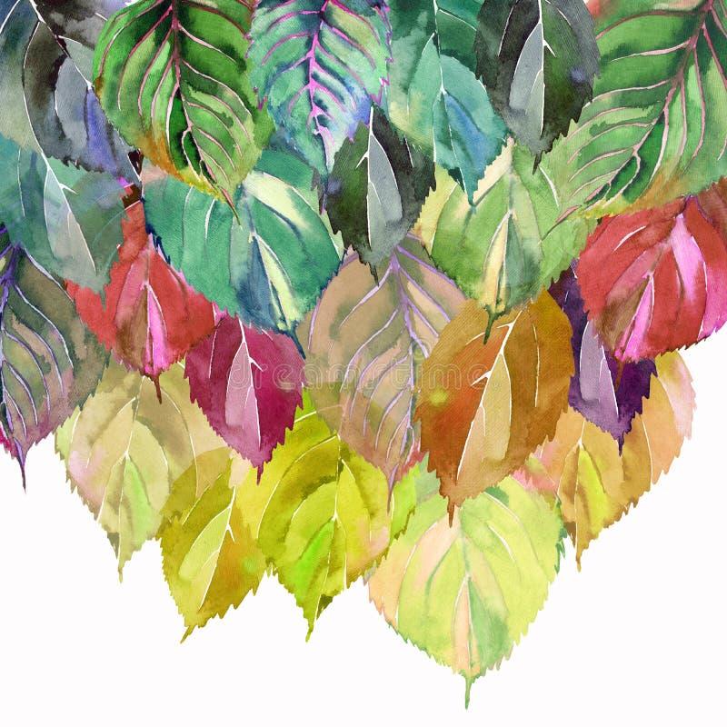 Härliga älskvärda gulliga underbara grafiska ljusa blom- växt- sidor för höstgräsplanguling mönstrar vattenfärgen royaltyfri illustrationer