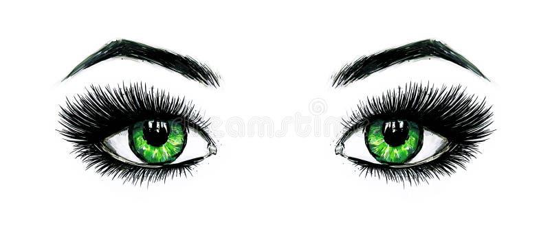 Härliga öppna kvinnliga gröna ögon med långa ögonfrans isoleras på en vit bakgrund Makeupmallillustration Färg skissar royaltyfri illustrationer