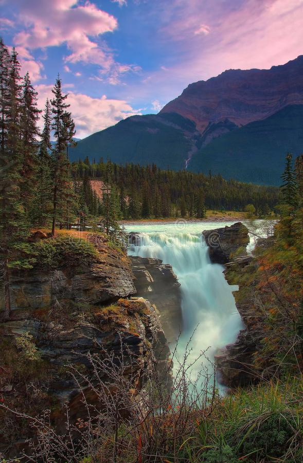 Härliga Athabasca nedgångar i Alberta royaltyfria bilder