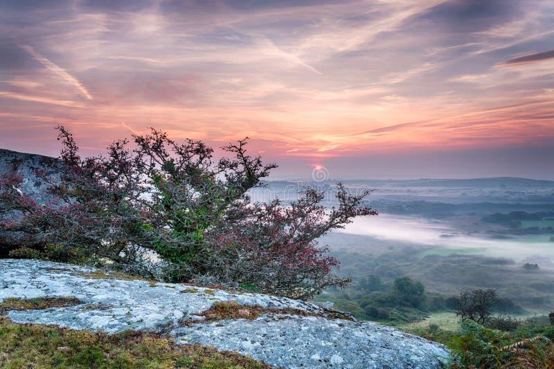 Härliga Autumn Sunrise royaltyfria bilder
