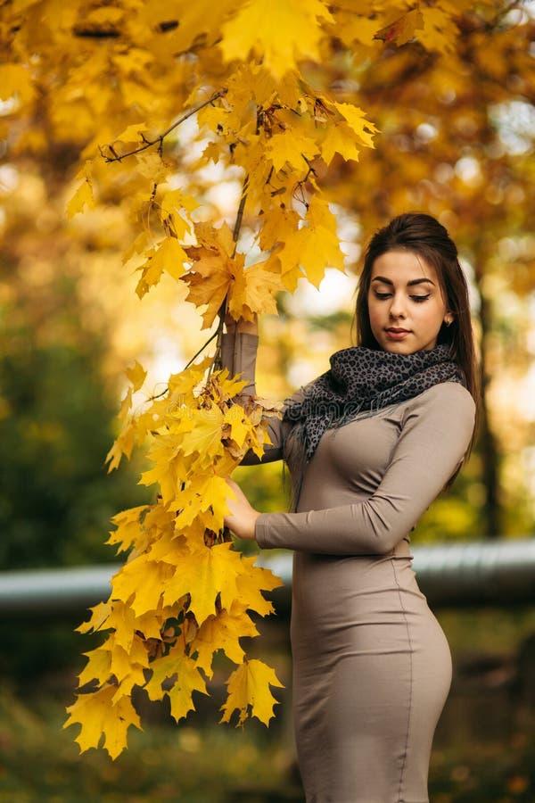 Härliga Autumn Woman med Autumn Leaves på nedgångnaturbakgrund Branch med gula leaves royaltyfri foto