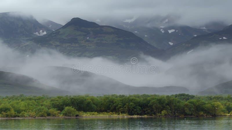 Härliga berg av Kamchatka, fåglar av Kamchatka royaltyfria bilder