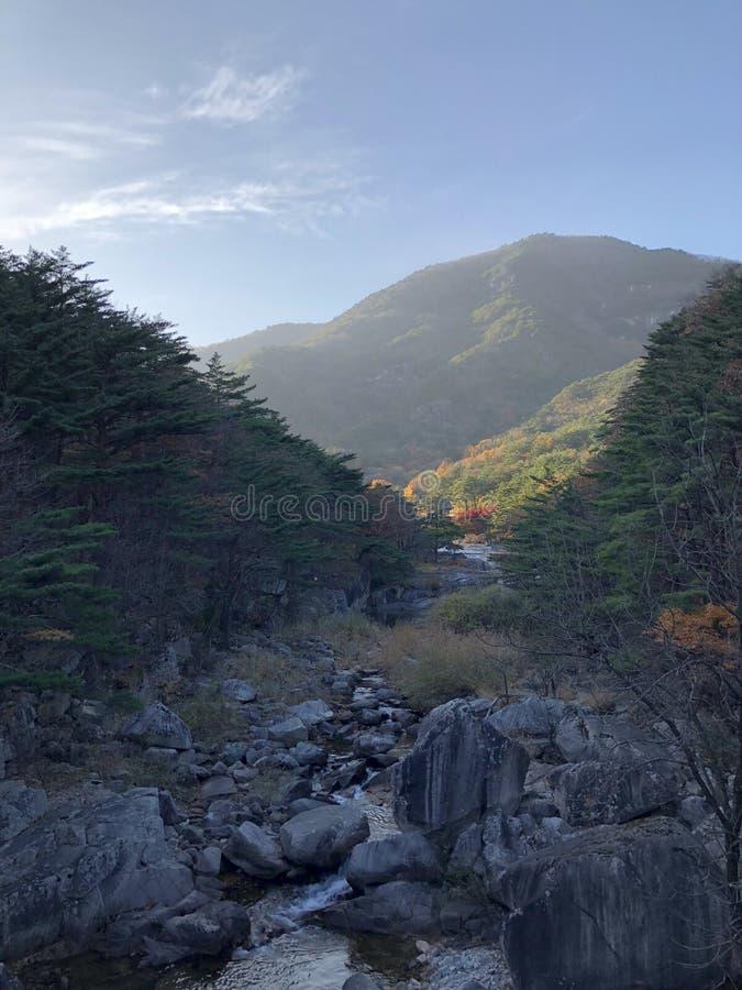 Härliga berg och ström fotografering för bildbyråer