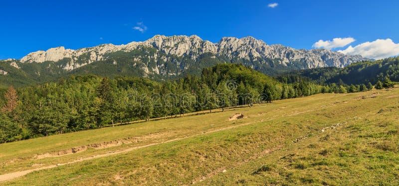 Härliga bergkanter och underbar panorama, Piatra Craiului berg, Carpathians, Rumänien royaltyfri foto