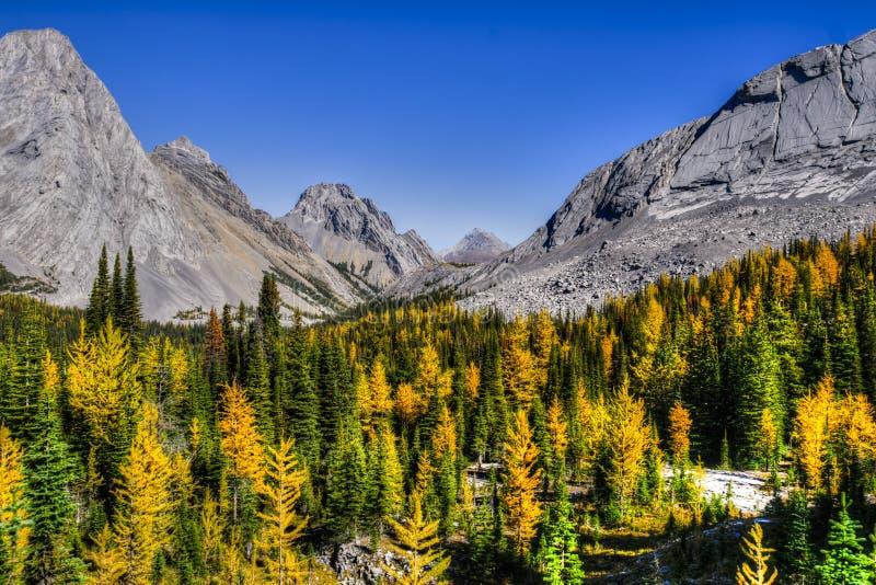Härliga berglandskap i höst fotografering för bildbyråer