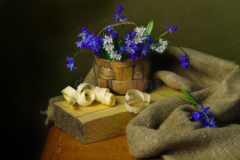 Härliga blommor för vår som isoleras på brun bakgrund arkivfoton