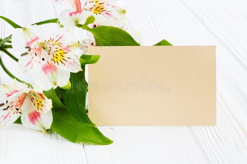 Härliga blommor med hälsningkortet Ställe för din text kvickhet royaltyfria foton