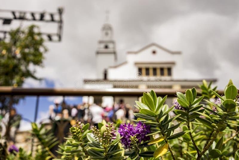 Härliga blommor och den Monserrate kloster royaltyfri foto