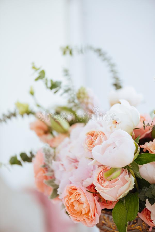 Härliga blomstra blommor royaltyfria foton