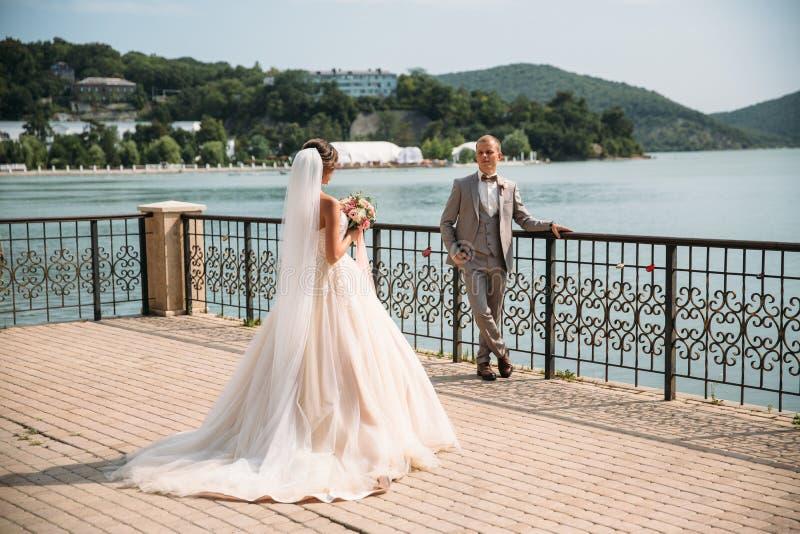 Härliga brölloppar, brud och brudgum Gullig flicka i den långa vita klänningen, män i grå affärsdräkt caucasus clouds ushba för s arkivbild