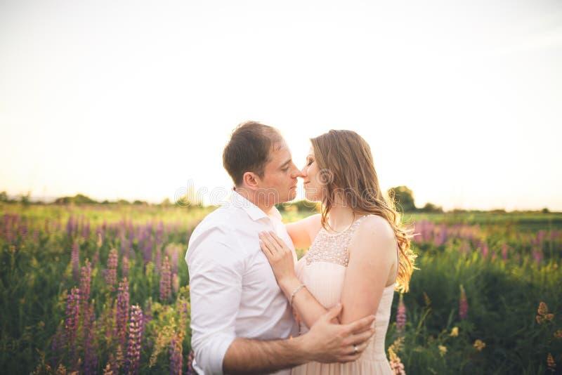 Download Härliga Brölloppar, Förälskelse På Solnedgången Fielf Med Blommor Fotografering för Bildbyråer - Bild av förbindelse, gräs: 78726639