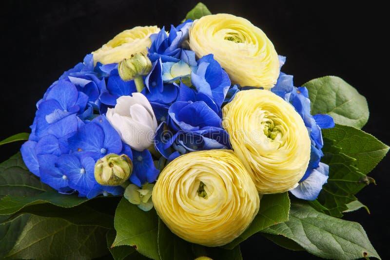 Härliga bukettblommor av den vita ranunculusen och blåttvanliga hortensian arkivbild