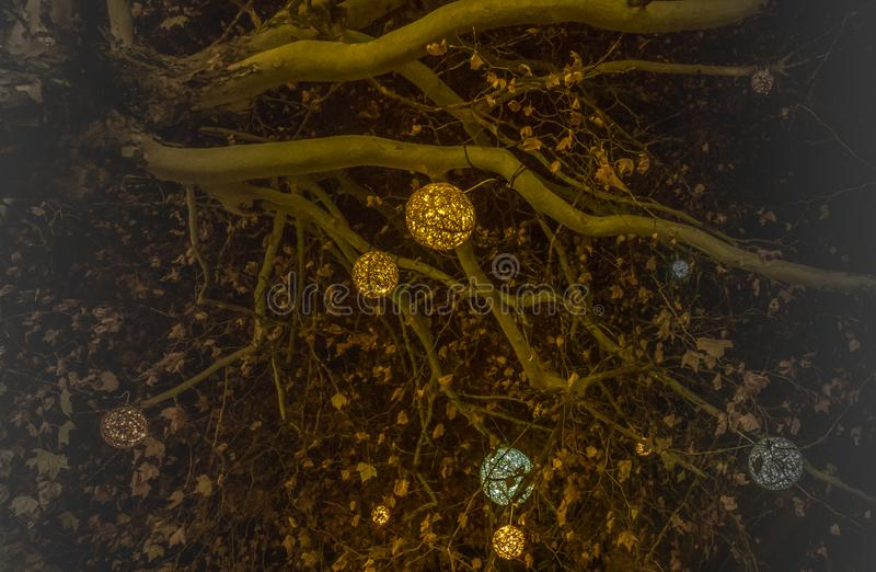 Härliga dekorerade julträdfilialer med skinande bollar i munich vektor illustrationer