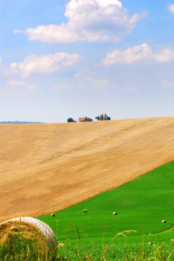 härliga fält tuscany royaltyfri fotografi