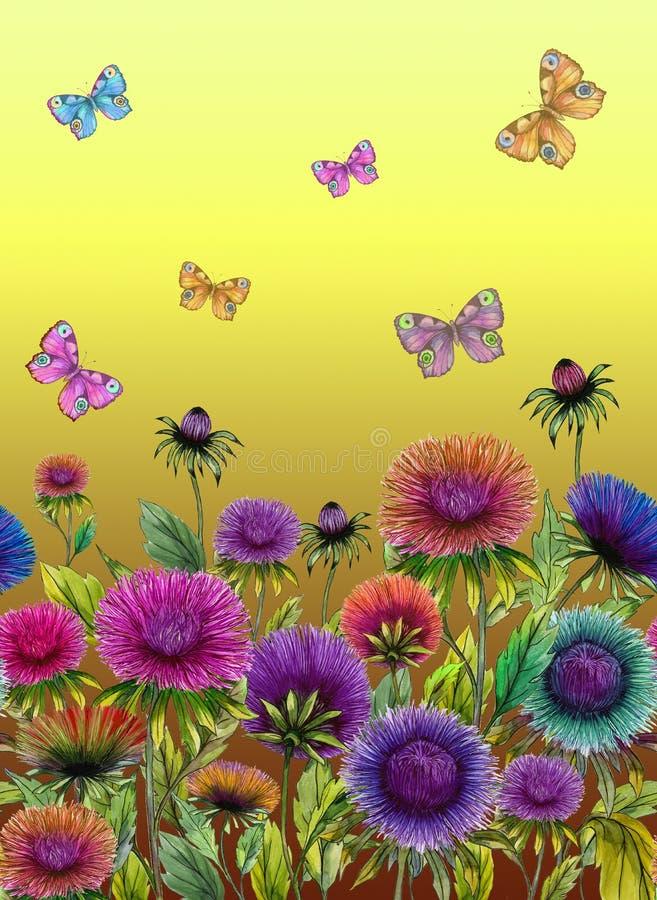 Härliga färgrika asterblommor och ljusa fjärilar på gul bakgrund seamless blom- modell för Adobekorrigeringar hög för målning för royaltyfri illustrationer