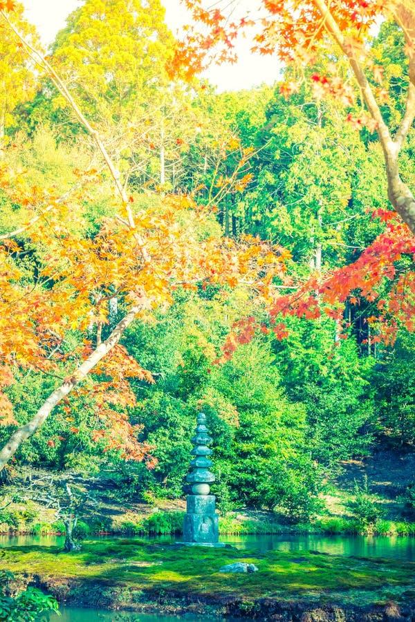 Härliga färgrika Autumn Leaves (filtrerad bilden bearbetad vint royaltyfria bilder