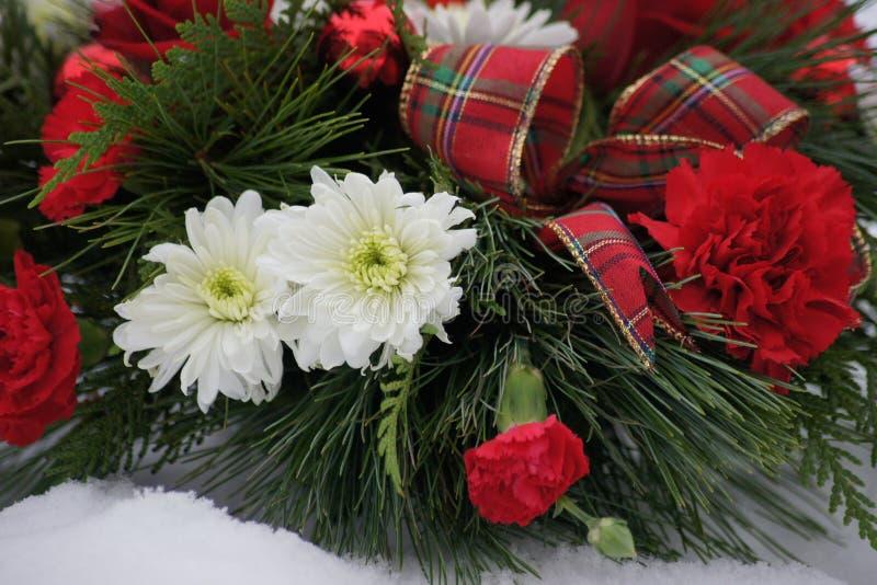 Härliga festliga blommor för arrangment för jul röda och vita, arkivbild