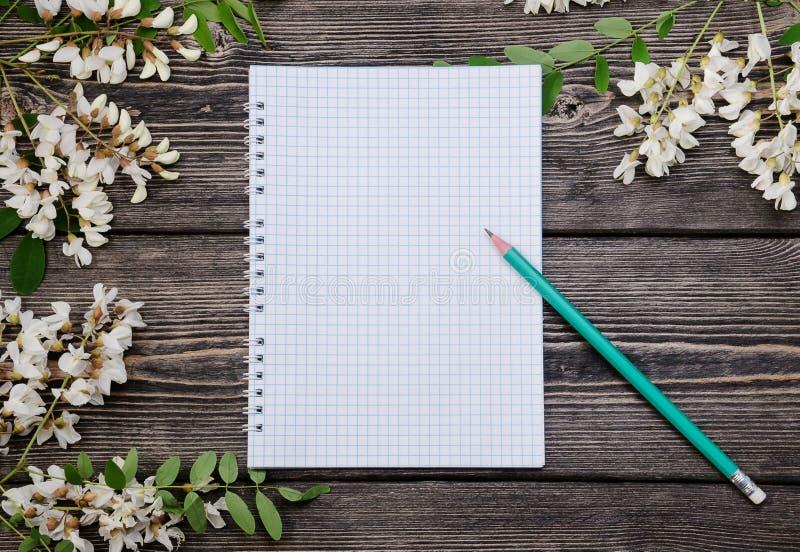 Härliga filialer och notepad för vårakaciablomning arkivbild