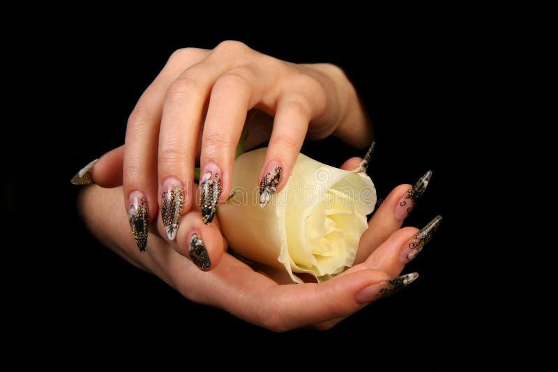 härliga fingernailfingrar mänskligt långt M royaltyfri fotografi