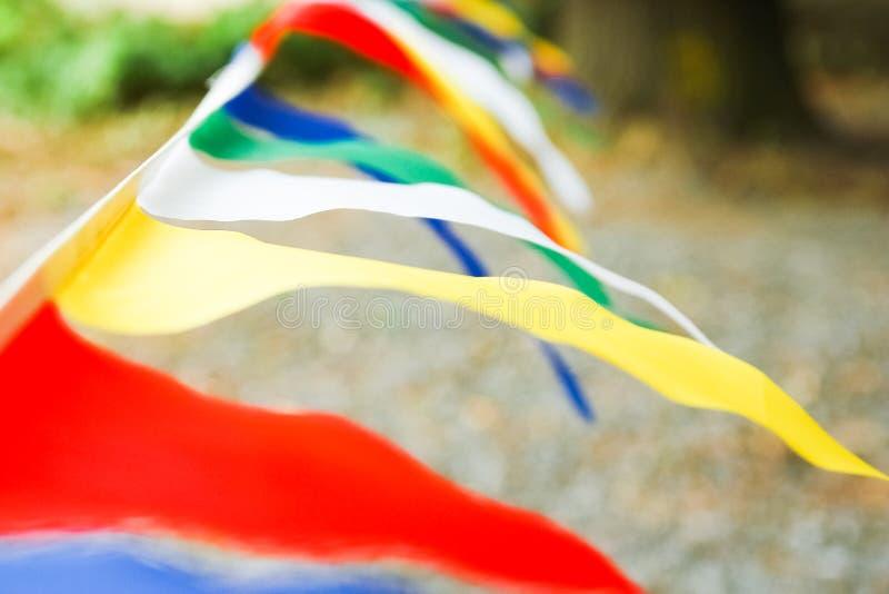 H?rliga flaggor p? ett rep i parkerar p? naturen arkivbilder