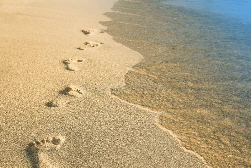 Härliga fotspår i sanden nära havet på naturbakgrund royaltyfria foton