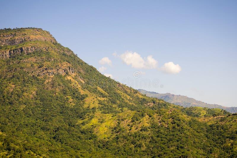 Härliga gröna berg/kullar med bakgrund för blå himmel arkivfoton