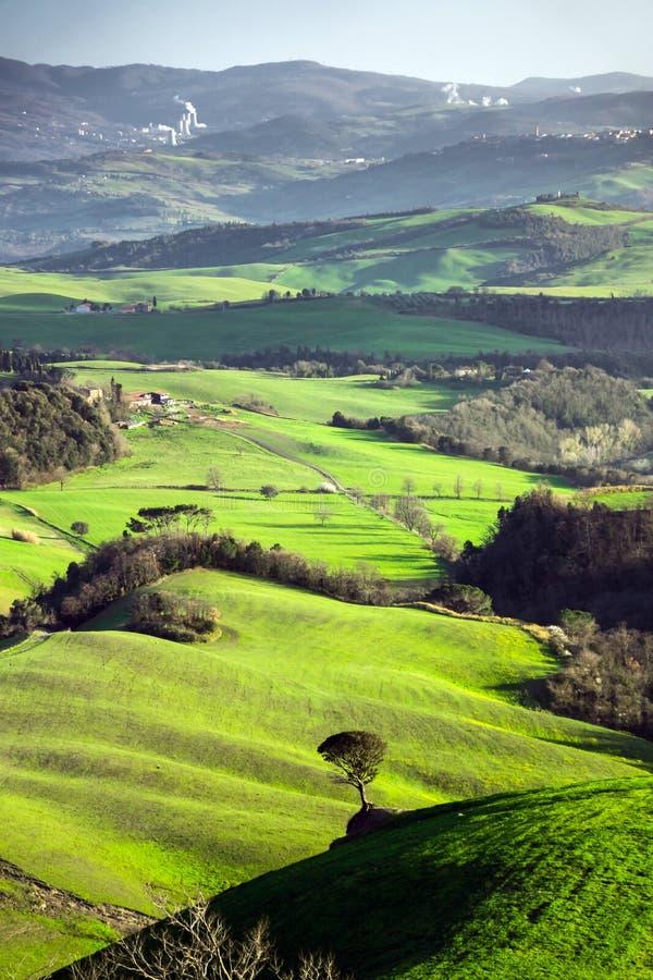 Härliga gröna kullar i Tuscany royaltyfri foto