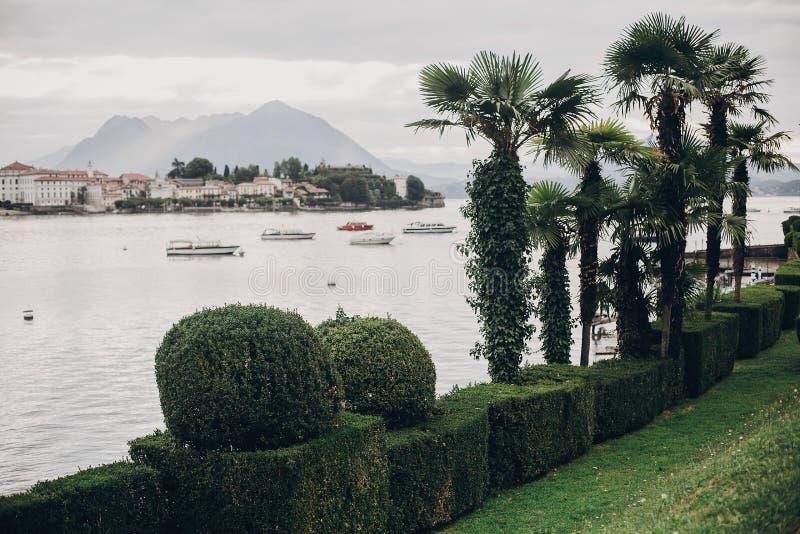 Härliga gröna träd, gömma i handflatan, arbeta i trädgården på kust av Lago Maggiore i den Stresa staden, Italien Grön pir på Lag royaltyfria foton