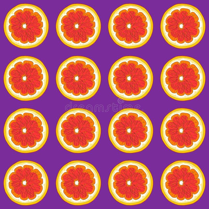 Härliga grapefrukter på en purpurfärgad bakgrund royaltyfri illustrationer