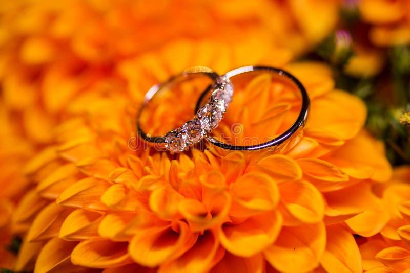 Härliga guldbröllopcirklar med diamanter på de orange blommorna royaltyfri bild