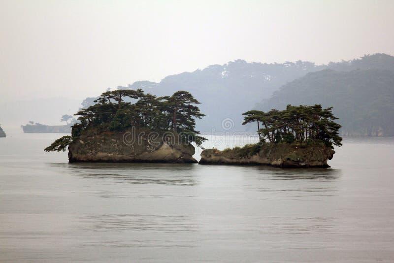 Härliga holmar i Matsushima täckte med sörjer att växa på roc arkivfoton