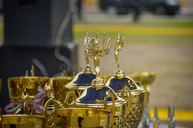 Härliga koppar väntar på deras vinnare Utmärkelser för deltagare av hundshowen Makro slapp fokus arkivfoton