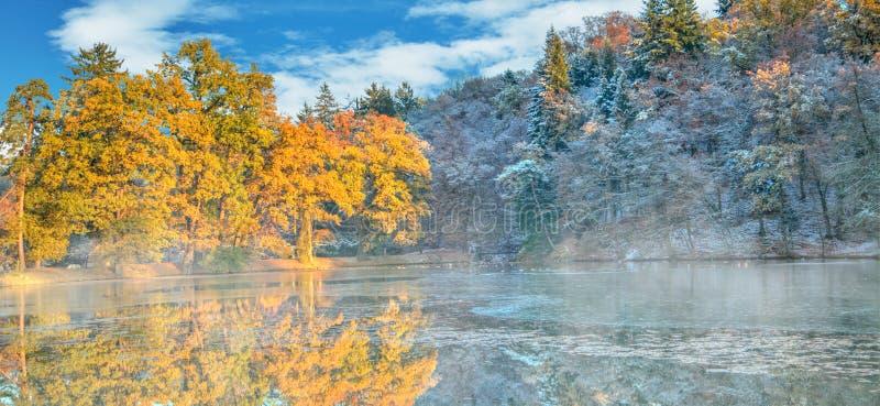 Härliga kulöra träd med sjön i hösten, landskapphotograp arkivfoton