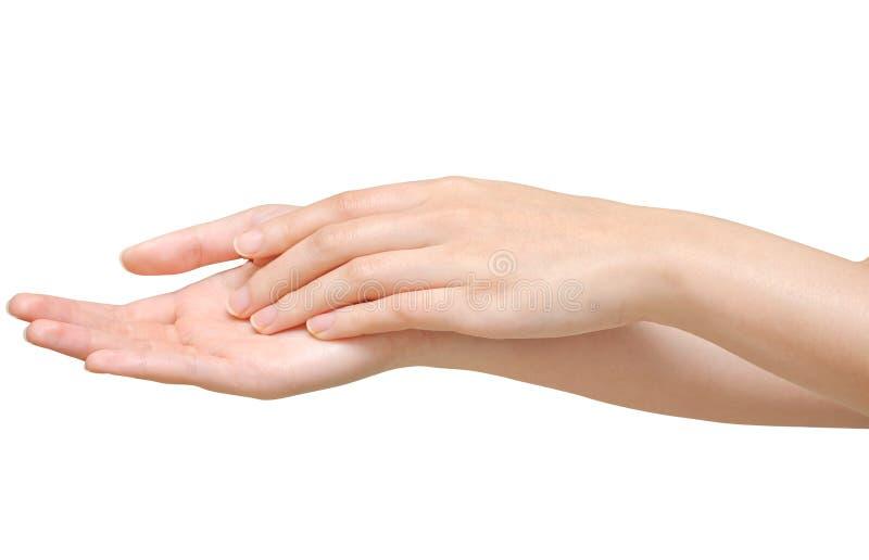 Härliga kvinnahänder på den vita bakgrunden royaltyfri fotografi