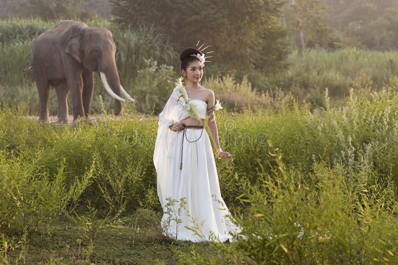 Härliga kvinnor som bär byn för vit elefant, Surin, Thailand royaltyfri bild